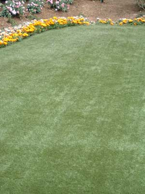 lawn and grass sisal 1